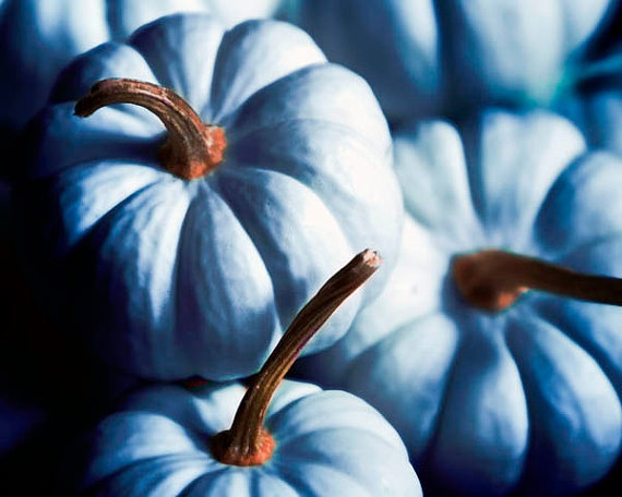 October Essential Colour Pumpkin Orange L Essenziale