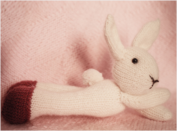 hand knitted bunny