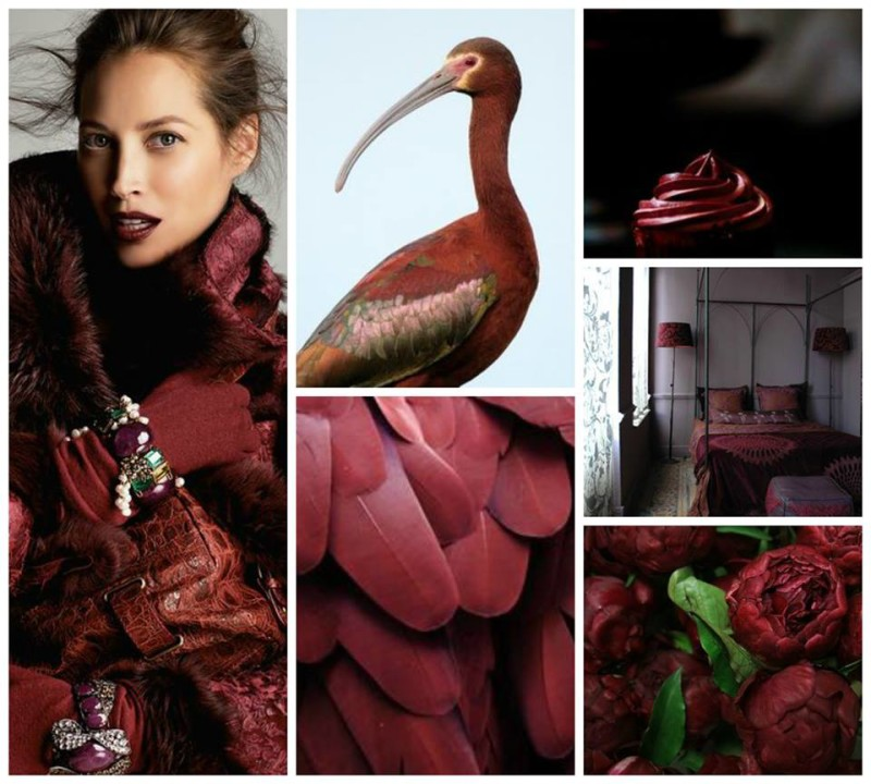 Marsala - Pantone's colour of the year.