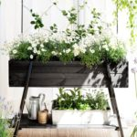 How To Choose Plants for Your Balcony