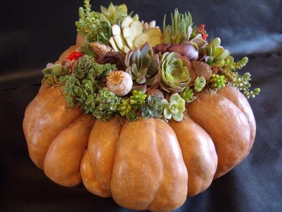 pumpkin-2-580x435