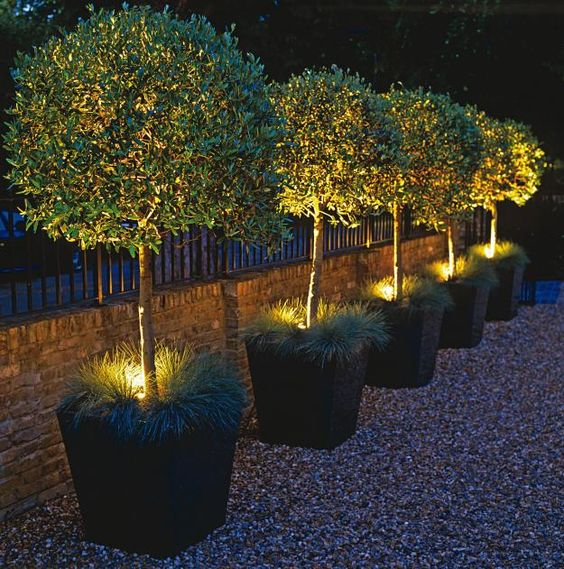 Beautiful garden lighting ideas for your home l 39 essenziale for Garden lighting designs