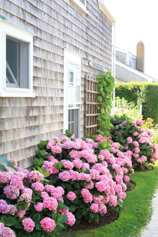 Affordable and Easy Curb Appeal Ideas
