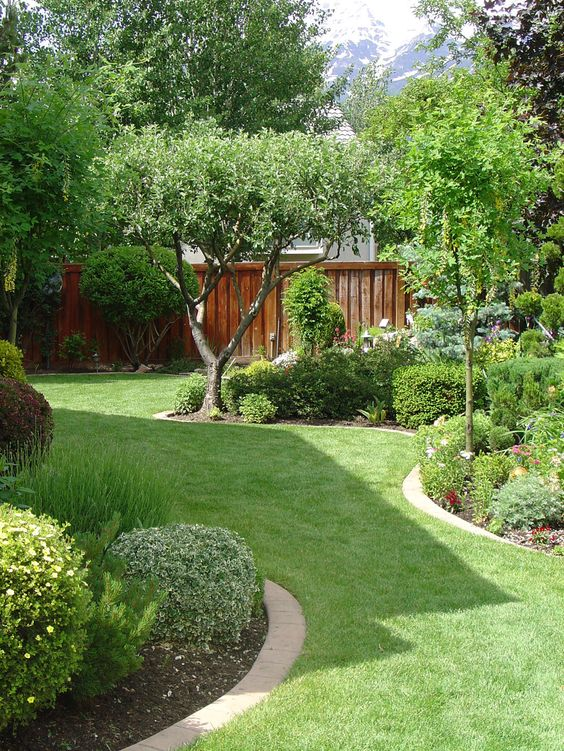 Eco-Friendly Lawn Care Design