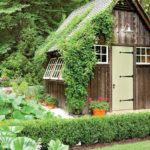 What You Need to Be Planting for the Summer Season