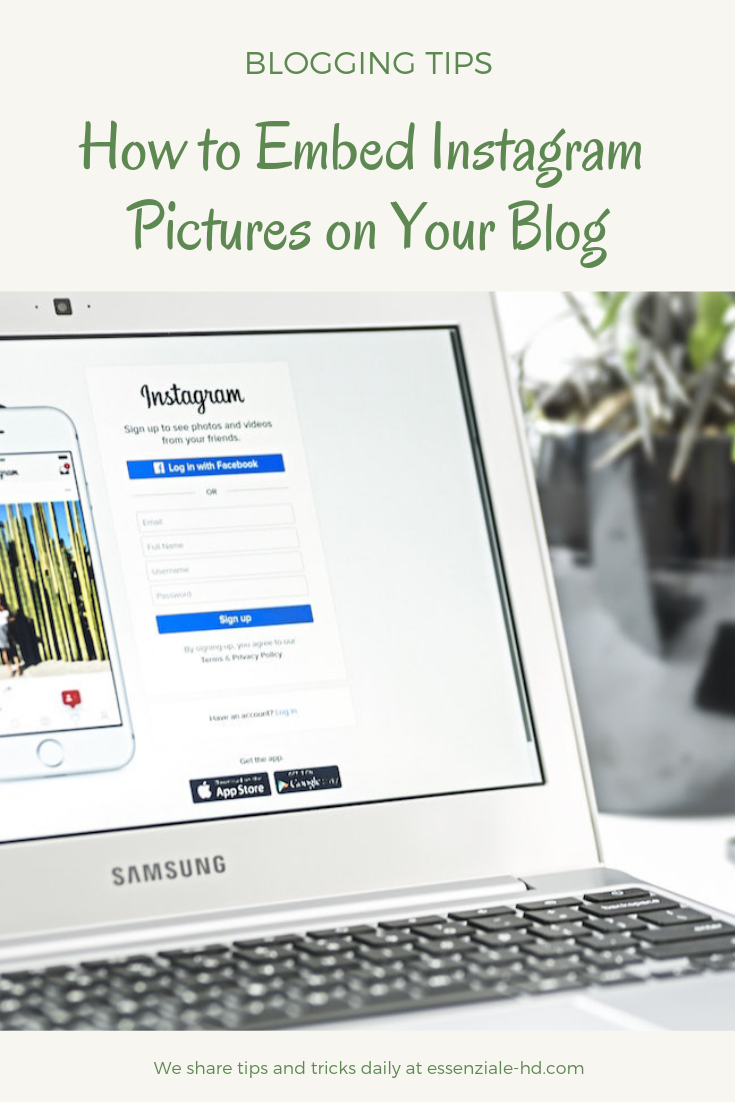How to Embed Instagram Pictures on Your Blog [ 2019: The